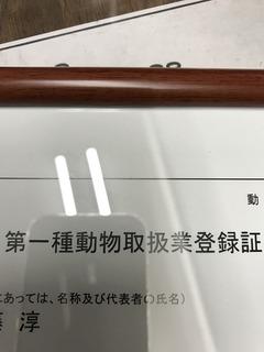 IMG_0989.JPG